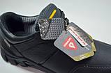 Мужские демисезонные кожаные кроссовки синие Shark 512, фото 2