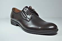Мужские кожаные туфли великаны коричневые Vivaro 950/2