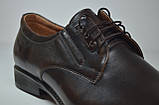 Чоловічі шкіряні туфлі велетні коричневі Vivaro 950/2, фото 5