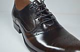 Мужские кожаные туфли полуброги коричневые L-Style 1122-1, фото 2
