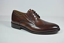 Чоловічі шкіряні туфлі броги руді Sensor Marriotti 210