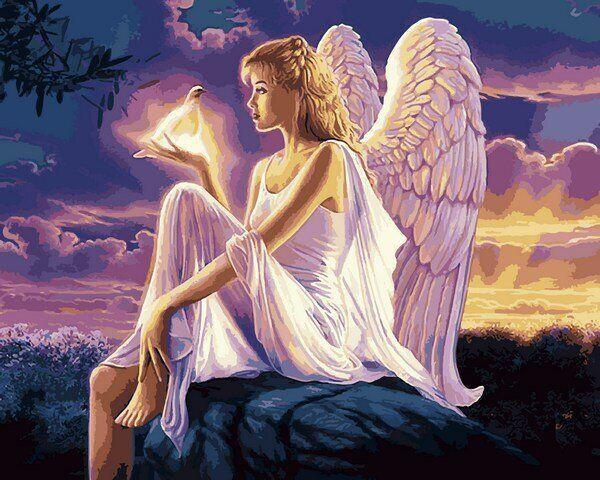VP1144 Раскраска по номерам Ангел с голубикой