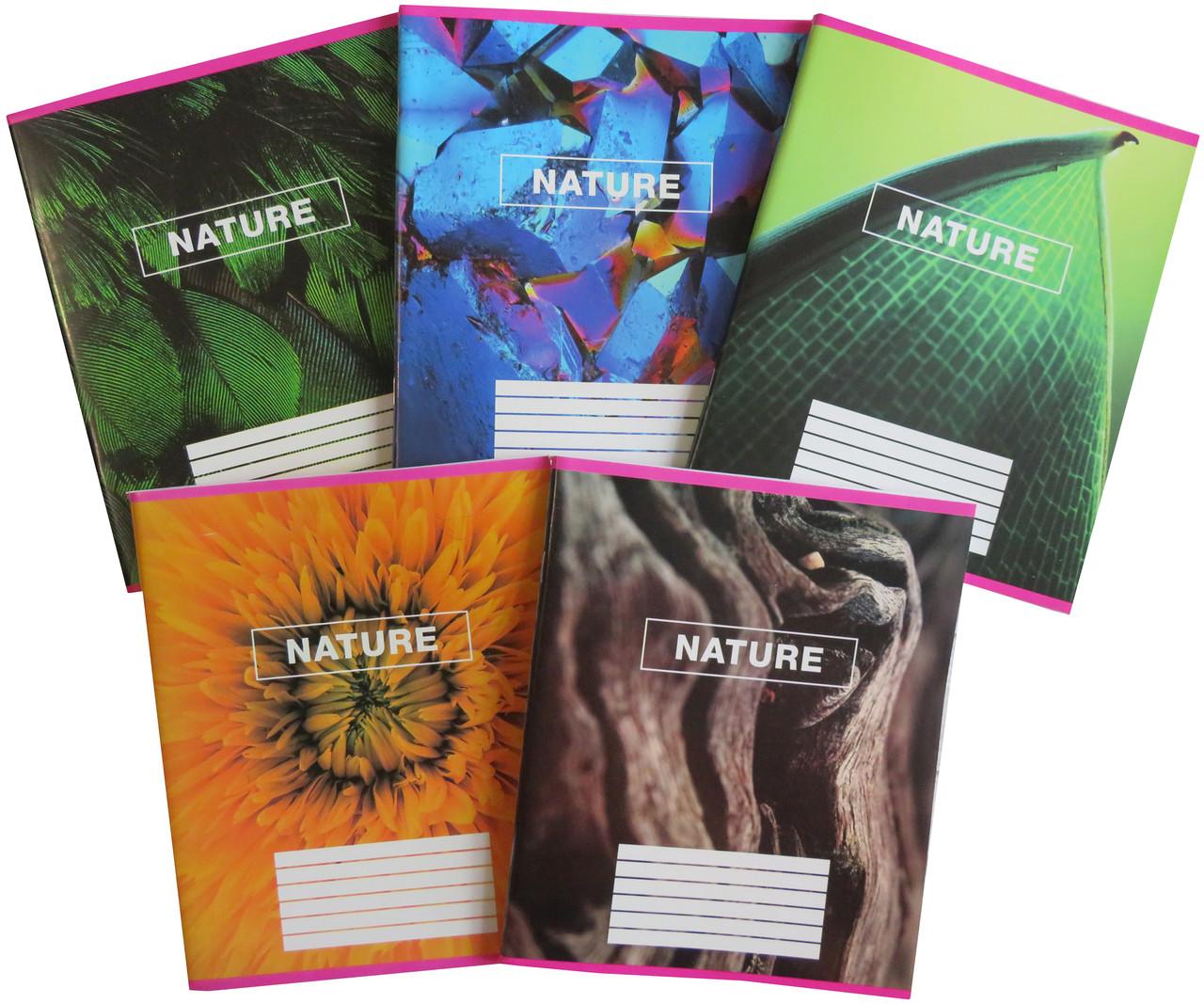 Тетрадь школьная в клеточку 96 листов Лидер, цвета природы
