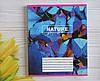Тетрадь школьная в клеточку 96 листов Лидер, цвета природы, фото 4