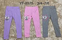 Лосини для дівчаток Miss Wifi оптом, 3/4-7/8 років. Артикул: YF8575, фото 1