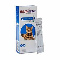 Капли Bravecto 2,8-6,25 кг Spot-On (Бравекто Спот-Он) от блох и клещей для Кошек, фото 1