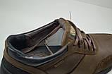 Чоловічі демісезонні шкіряні кросівки коричневі Shark 512, фото 2