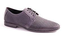 Туфли мужские синие Vortex 8022