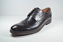 Мужские классические кожаные туфли великаны коричневые Vivaro 611/2