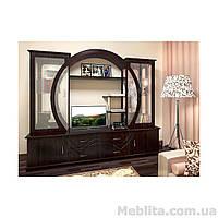 Корпусная мебель для гостиной Спектр