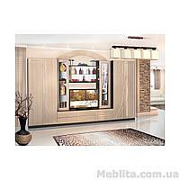 Корпусная мебель для гостиной Омега