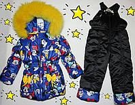 Зимний комбинезон +куртка синяя на 5-6 лет натуральная опушка (писец-Белый альбинос)
