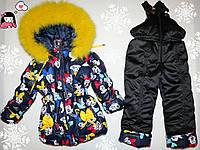 Зимний комбинезон +куртка черная на 5-6 лет натуральная опушка (писец-Белый альбинос) синий