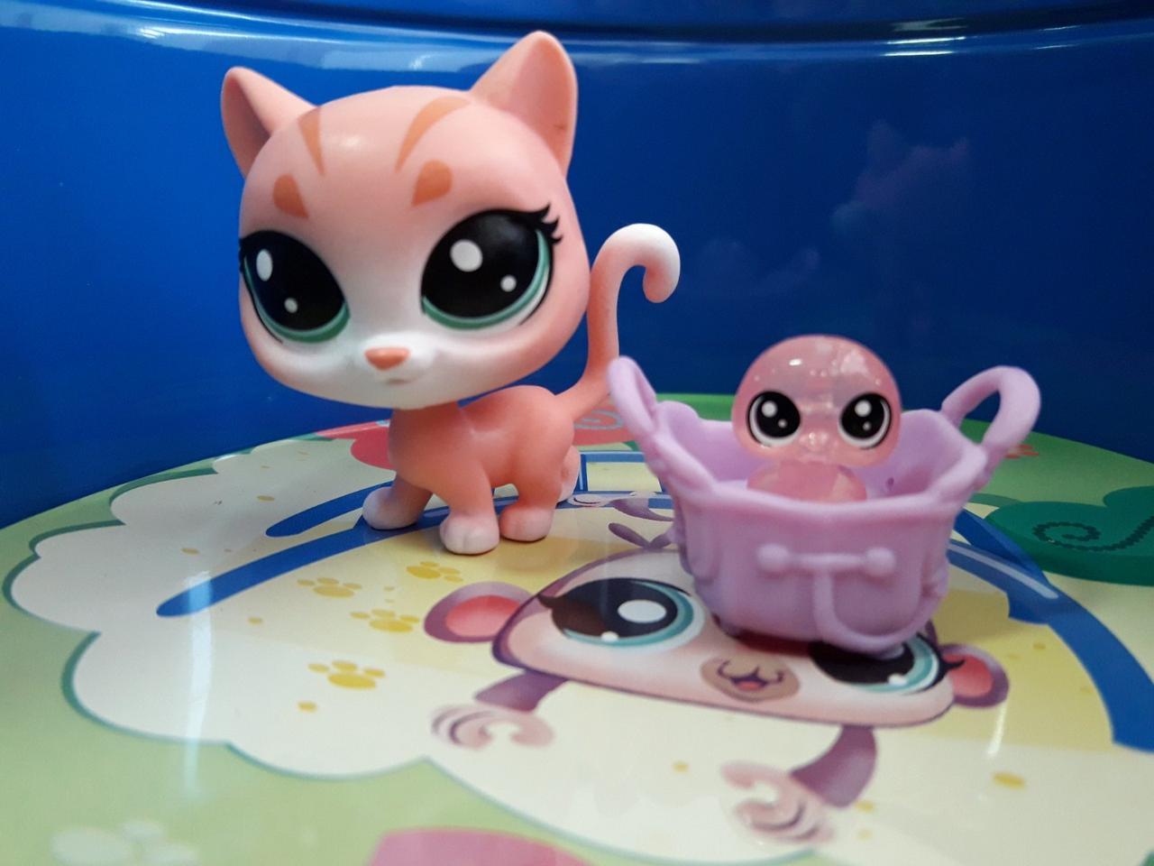 Littlest pet shop lps игрушка Hasbro лпс пет шоп кошечка+аксессуар+произвольный пет poppy tabling