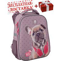 Рюкзак школьный каркасный Kite Education Studio Pets SP20-531M