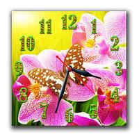 Бабочка на цветке - часы настенные 30*30 см
