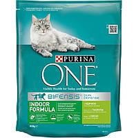 Преимущества сухого корма для кошек пурина