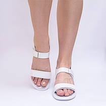 Женские белые босоножки на липучках на плоской подошве Кожа Размеры 36-41, фото 3