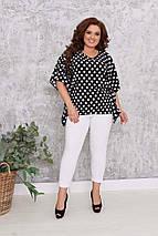 """Женский брючный костюм """"SALINAS"""" с блузой-разлетайкой в горох (большие размеры), фото 2"""
