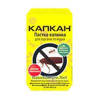 "Ловушка-домик для тараканов и муравьев ""Капкан"""