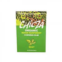 Жевательная резинка со вкусом мяты органическая Chicza 30г