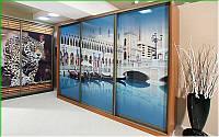 Шкаф купе 05 2000х450х2400 Алекса мебель, фото 1