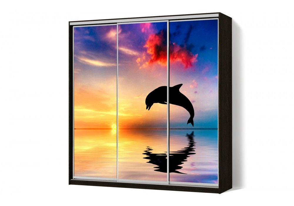 Шкаф купе 05 2600х600х2400 Алекса мебель