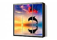 Шкаф купе 05 2600х600х2400 Алекса мебель, фото 1