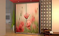 Шкаф купе 01 1300х450х2400 Алекса мебель, фото 1