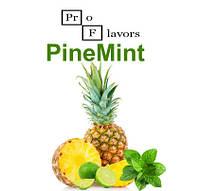 Набор для замеса жидкости Pro Flavors PineMint 100 мл.