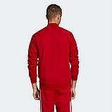 Мужской спортивный костюм Adidas (Адидас), фото 3