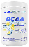 BCAA Instant Max Support All Nutrition (500 гр.)