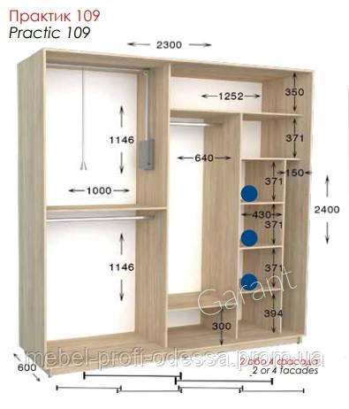 2300х600х2400 Практик 109 Прямой шкаф купе фабрика Гарант в Одессе