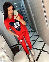 Женский Трикотажный Спортивный Костюм Белый, Красный, Черный