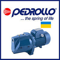 Насосная станция Pedrollo JSWm 10M (копия Украина)