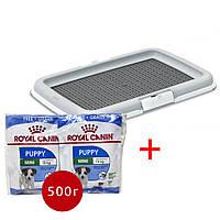 Stefanplast туалет 60*40*4 см + Корм Royal Canin пробники для щенков 0,5кг