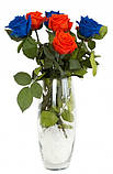 Долгосвежая роза Синий САПФИР (5 карат на коротком стебле), фото 3