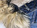 Куртка женская M.O.D цвет темно-синий джинс размер S арт AU15-JA134, фото 5