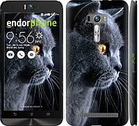 Пластиковый чехол Endorphone на Asus ZenFone Selfie ZD551KL Красивый кот 3038m-116-26985, КОД: 1755423