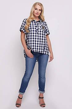 Женская хлопковая рубашка Ангелина синяя клетка / размер 48, 50, 52, 54, 56, 58