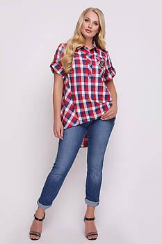 Женская хлопковая рубашка Ангелина красная клетка / размер 48, 50, 52, 54, 56, 58