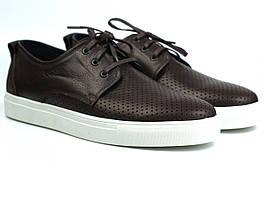 Взуття великих розмірів чоловіча літні кросівки коричневі шкіряні кеди перфорація Rosso Avangard Brown&White