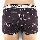 Трусы-боксерки мужские Raval (упаковка 2 шт), фото 4