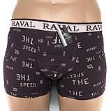 Трусы-боксерки мужские Raval (упаковка 2 шт), фото 5