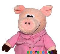 Мягкая игрушка Devik toys Поросенок в халате  24 см 2 в ассортименте  M1717424B, фото 1