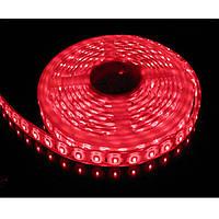 Стрічка червона 9,6W/м 120LED/м IP65 в силіконі світлодіодна 8mm MTK-600RF3528-12 №1