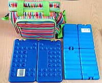 Сумка-холодильник Time Eco TE-7017 17 л в комплекті з акумуляторами холоду