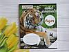 Тетрадь школьная в клеточку 36 листов Лидер, дикие животные, фото 4