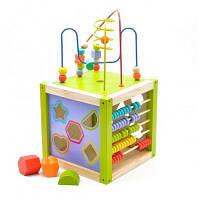 Развивающая игрушка Мир деревянных игрушек Универсальный куб (Д260)