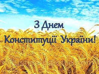 Режим работы вейп-шопа Вкусное парение на День Конституции Украины 2020